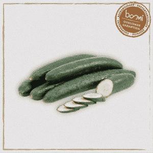 Pepino Japonês Orgânico