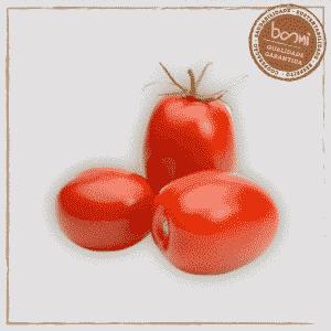 Tomate Italiano Orgânico