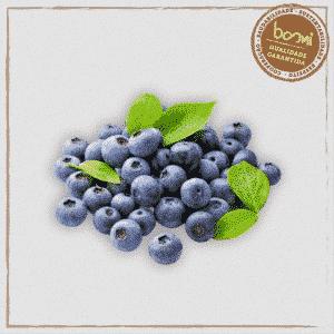 Mirtilo Blueberry Orgânico Congelado