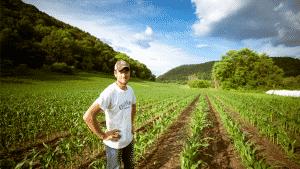 agricultura orgânica e meio ambiente