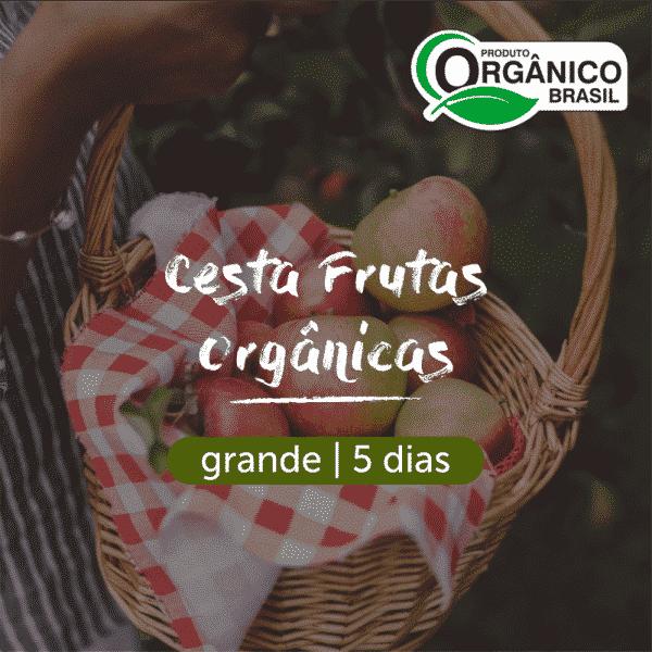 Cesta Frutas Orgânicas   Grande (4+ pessoas) 5 dias