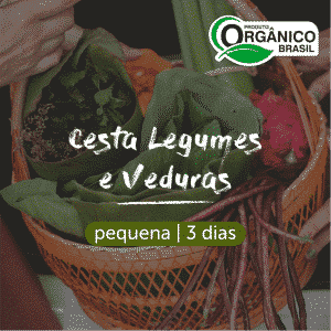 Cesta Legumes e Verduras Orgânicos | Pequena (Individual) 3 dias