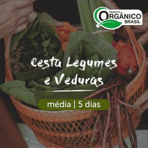 Cesta Legumes e Verduras Orgânicos | Média (2-3 pessoas) 5 dias