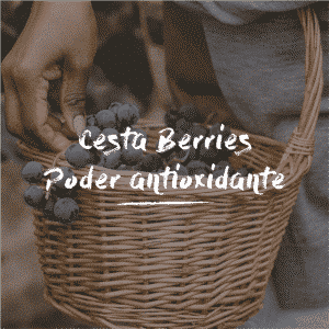 Cesta Berries Poder Antioxidante