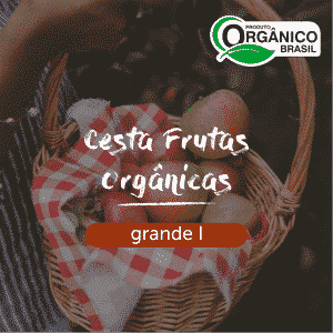 Cesta Frutas Orgânicas Grande I