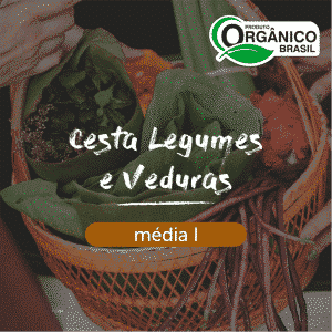 Cesta Legumes e Verduras Média I
