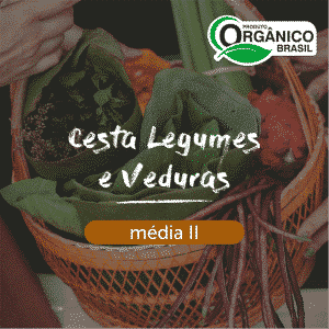 Cesta Legumes e Verduras Média II