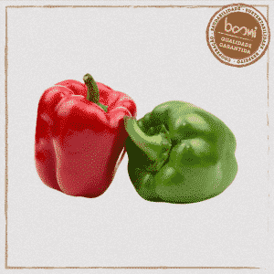 Mix de pimentão verde e vermelho orgânico
