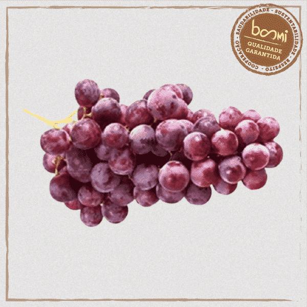 Uva roxa sem semente orgânica