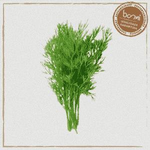 erva doce orgânica