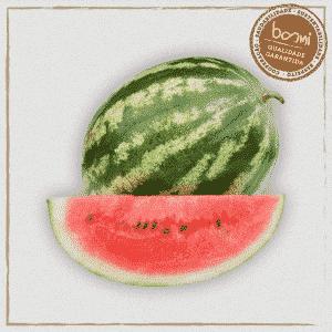 mini melancia orgânica